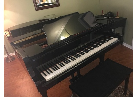 YOUNG CHANG 5'9 GRAND PIANO FOR SALE! FLAWLESS CONDITION
