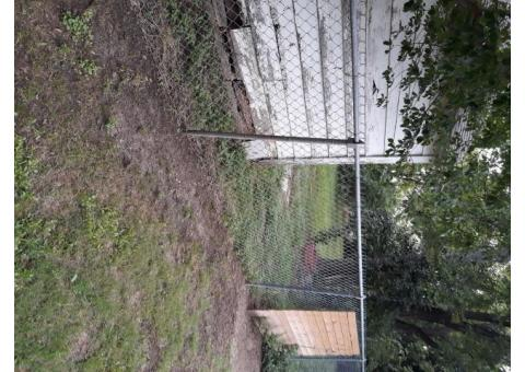 FREE Chain Link Fence and Posts