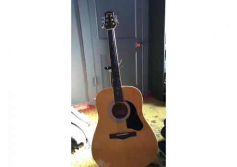 Silvertone Acoustic Modle No. SD3000PK N